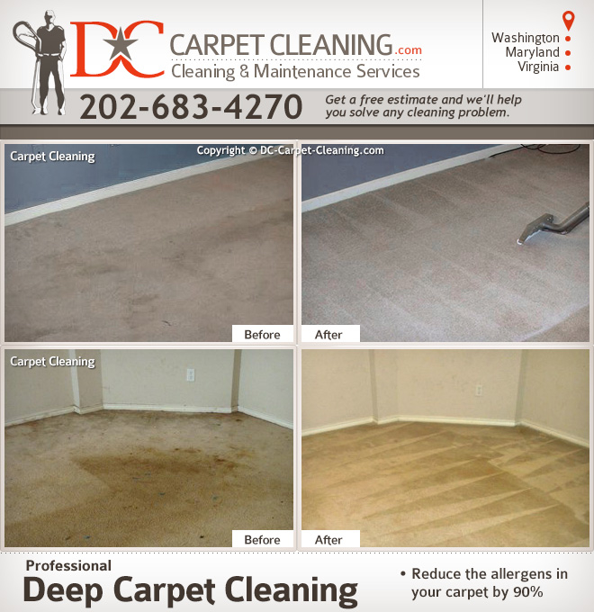 DC Carpet Cleaning image 1
