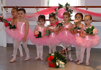Academy of Ballet/Academy Performing Ensemble image 0