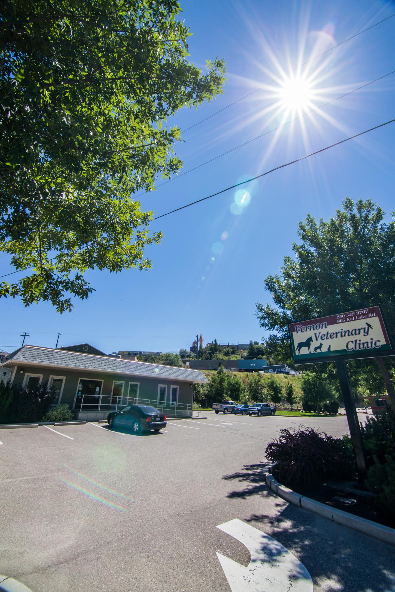 Vernon Veterinary Clinic 805 Kalamalka Lake Rd BC Veterinarians