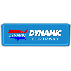 Dynamic Tour Hawaii