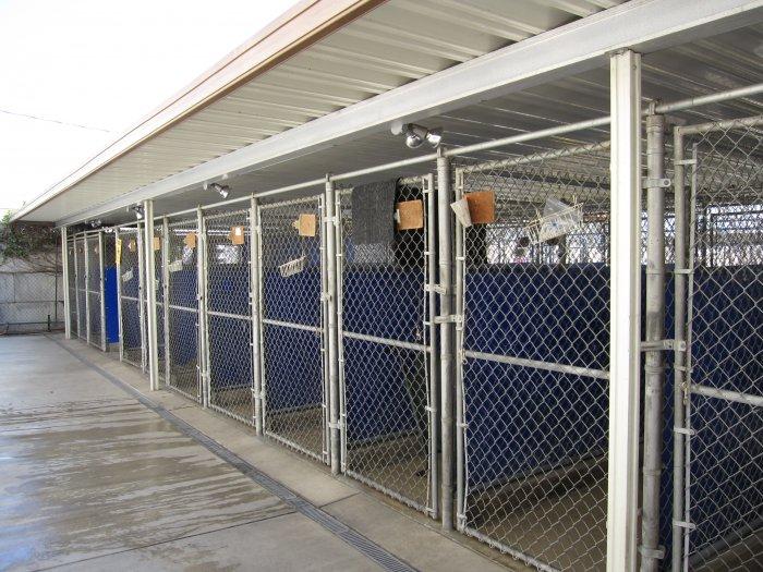 VCA La Mirada Animal Hospital image 4