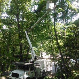 Above All Tree Service - Canton, NC 28716 - (828)775-1676 | ShowMeLocal.com