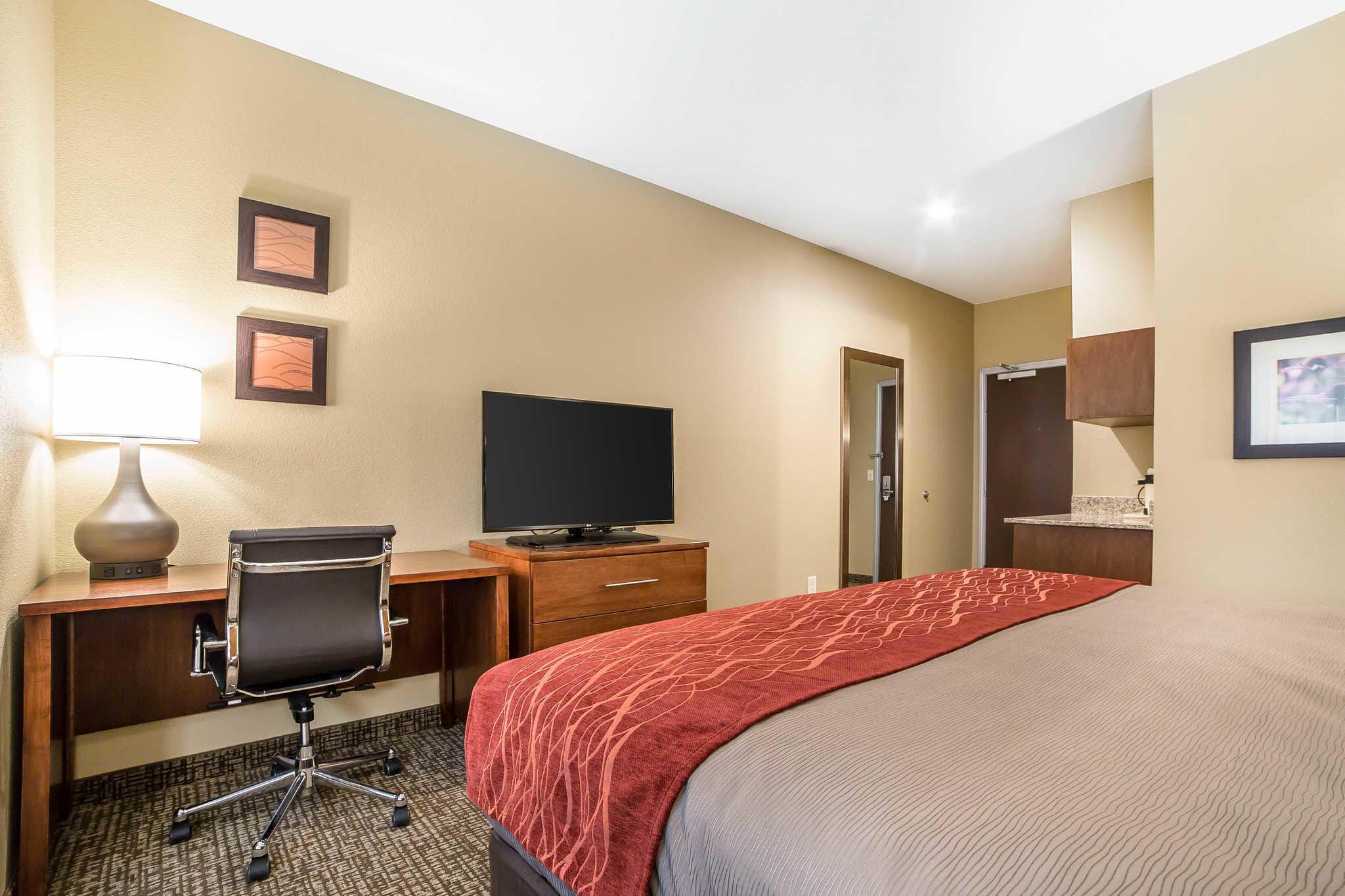 Comfort Inn & Suites Near Mt. Rushmore image 8