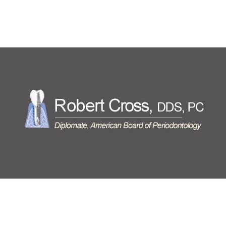 Robert Cross, DDS