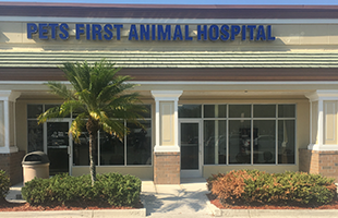 Pets First Fort Myers