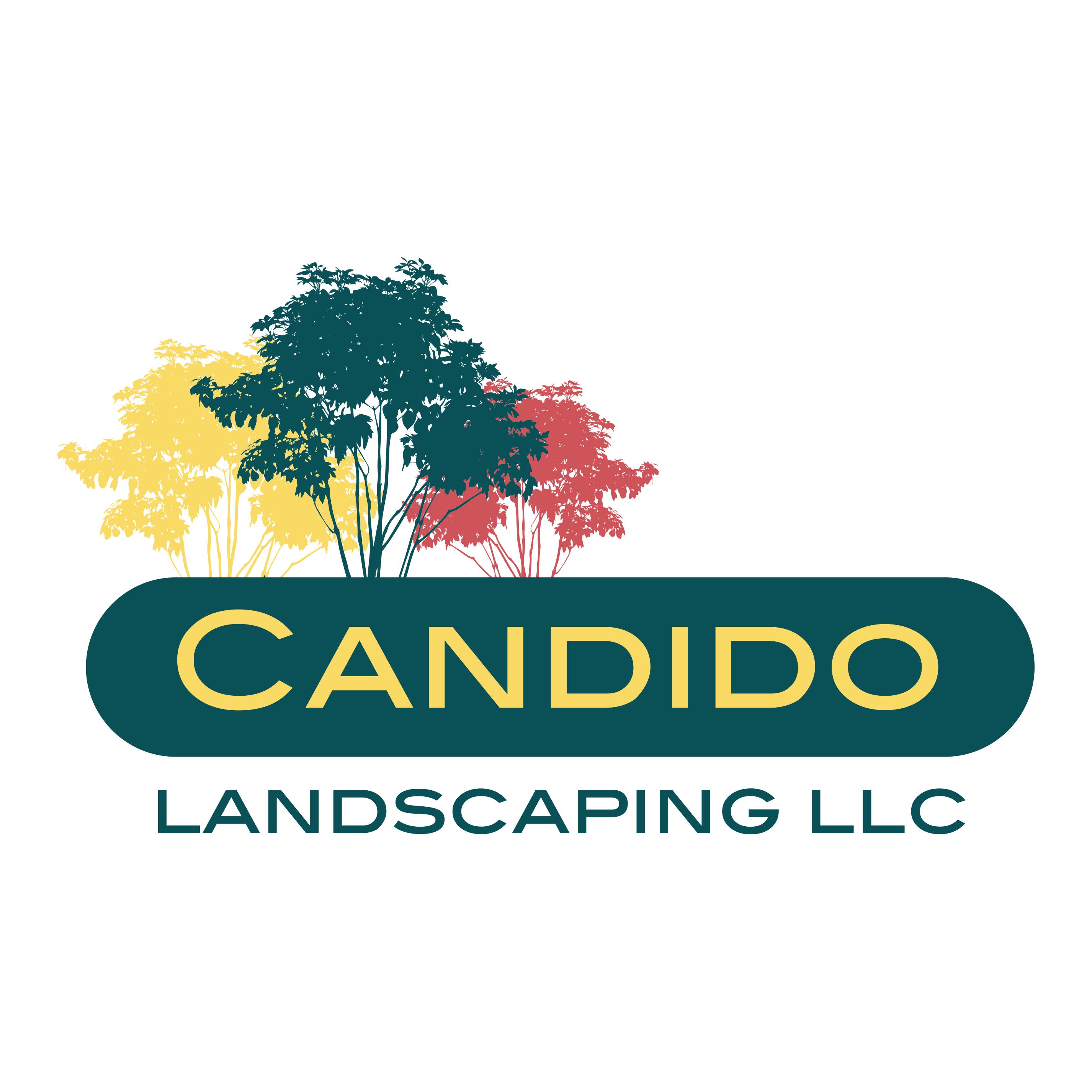 Candido Landscaping LLC