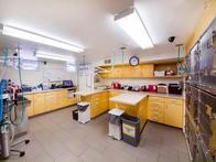 VCA Cat Hospital of Philadelphia Lab