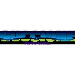 Guccione Auto
