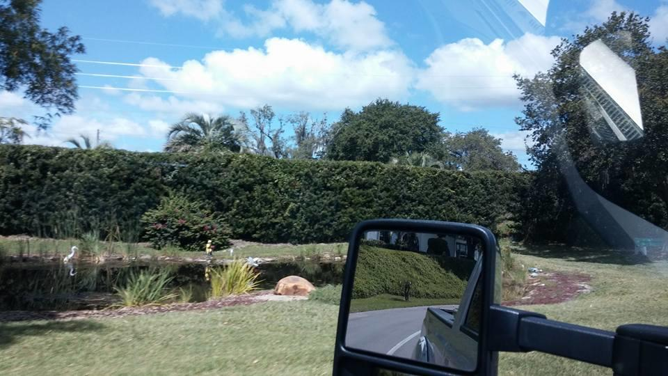 Freedom Lawn Care & Landscaping LLC