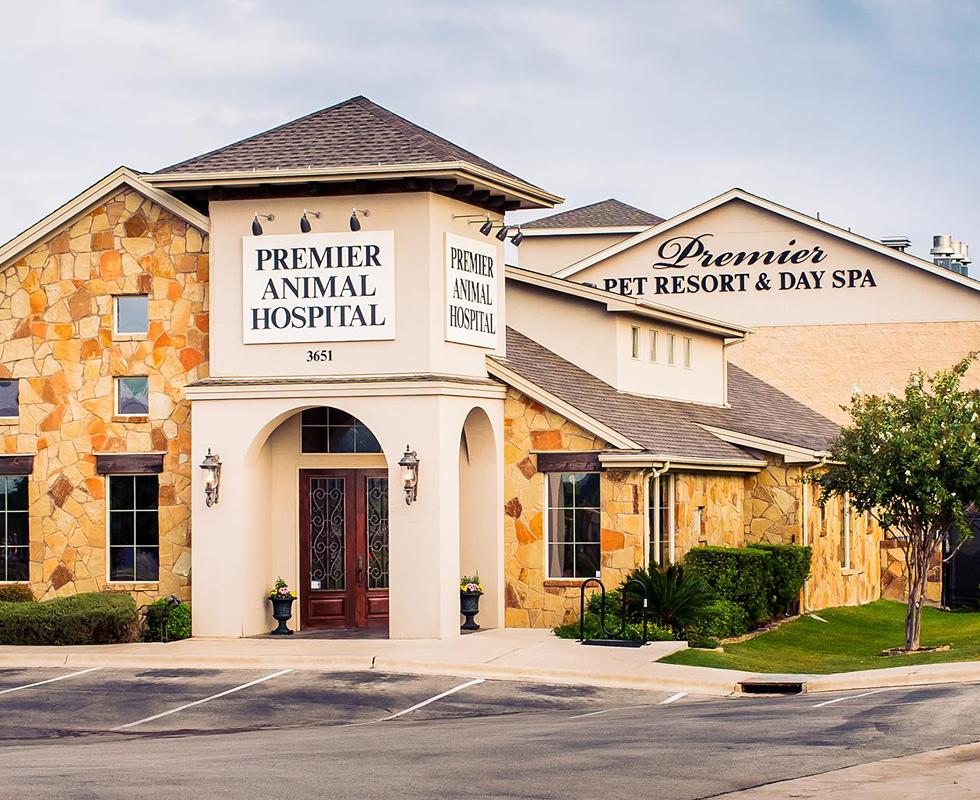 VCA Premier Animal Hospital and Pet Resort image 0