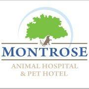 Montrose Animal Hospital