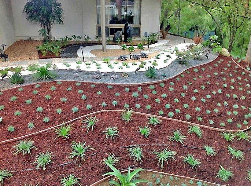 Flores Landscaping image 62