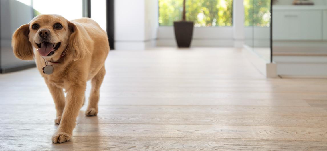 Kindred Flooring image 17