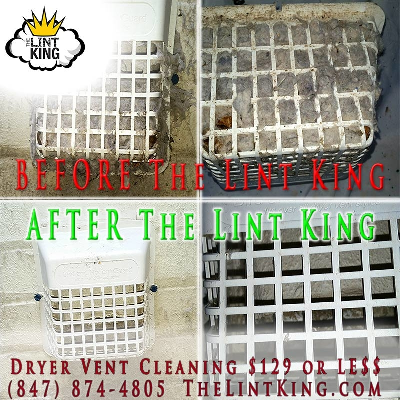 Bird's nest Cover Cleaning and Repair. The Lint King Inc.