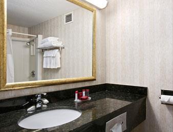 Ramada Toledo Hotel and Conference Center image 11