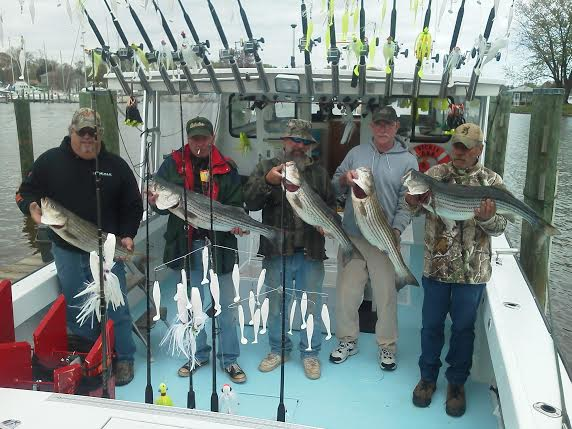 Herring bay charters llc in deale md 443 994 6 for Deale md fishing charters