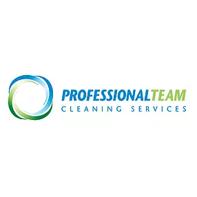 Professional Team Cleaning Services