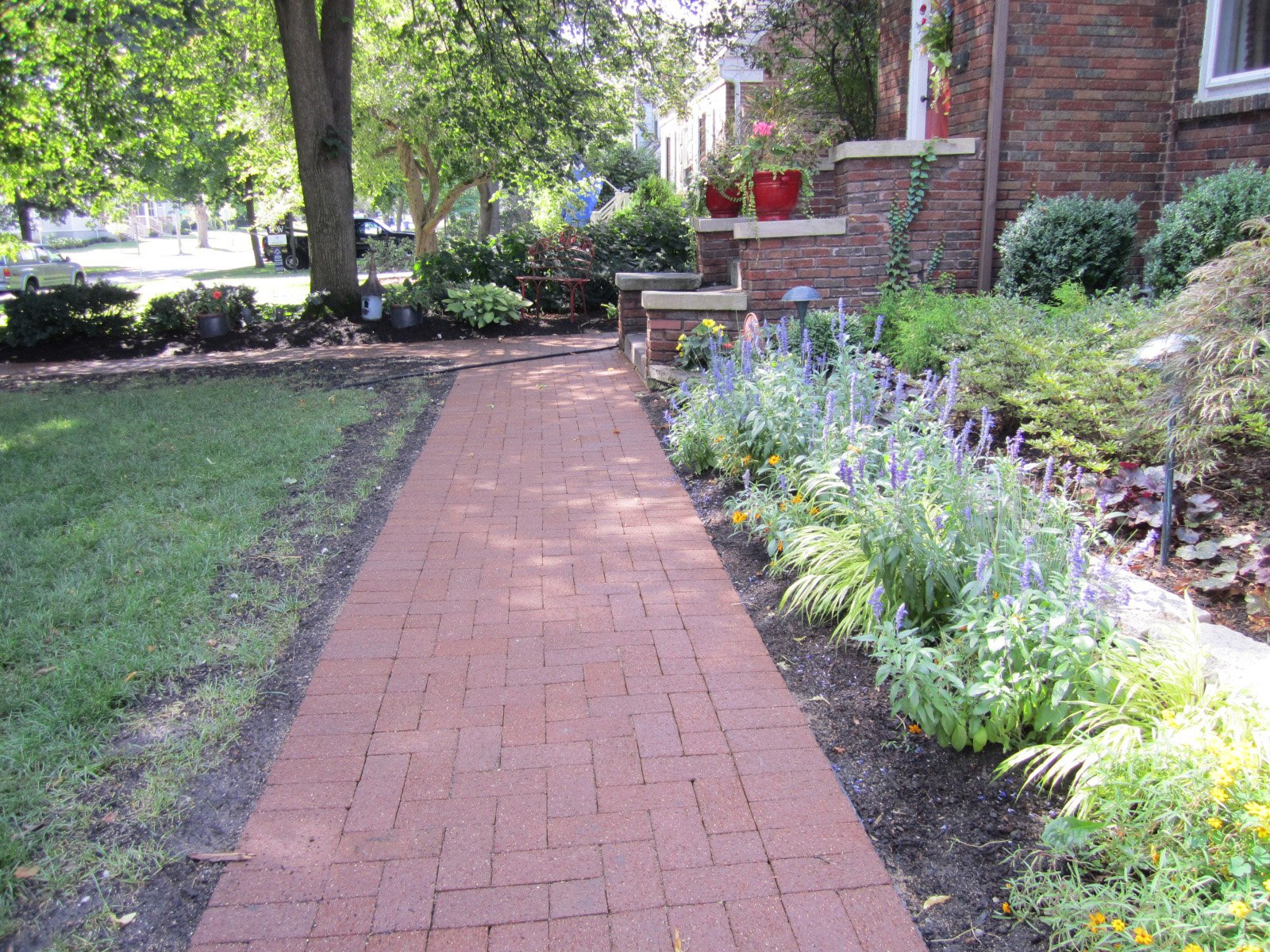 Anns Landscaping image 3