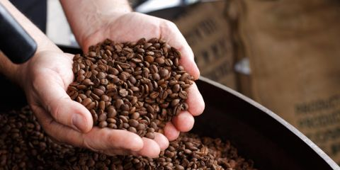 Commercial Coffee Maker FAQs From Buffalo Rock Company