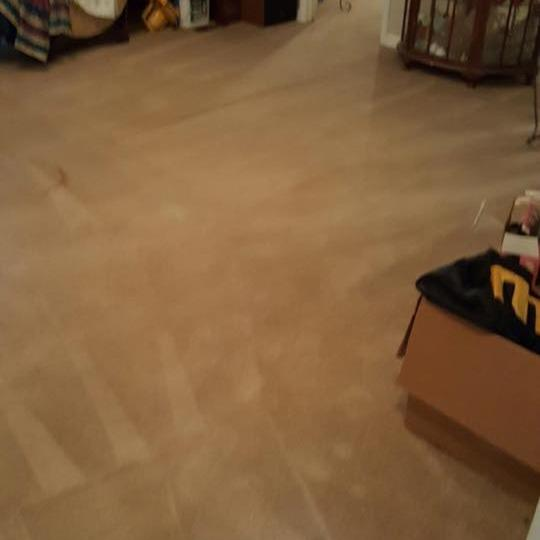 Southwind Carpet Cleaning Service, After Cleaning