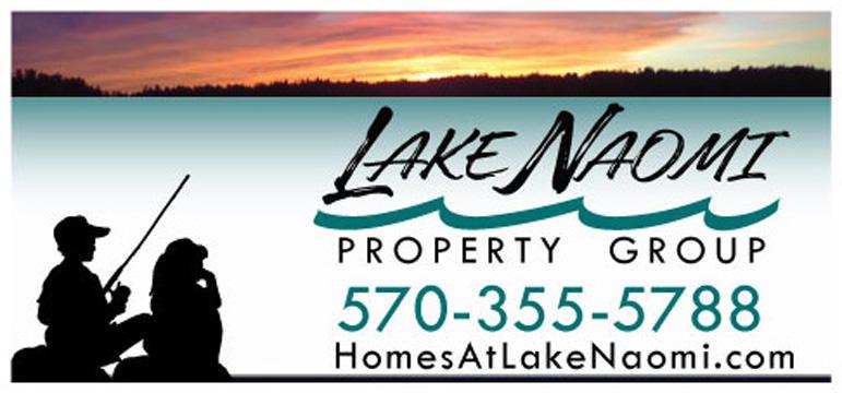 Lake Naomi Property Group, Inc. image 11