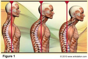 Denver South Chiropractic & Rehab image 1