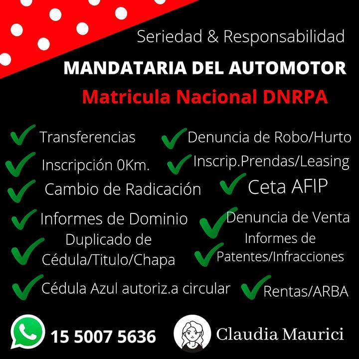 Mandataria Matriculada del Automotor