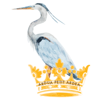 Heron Med Spa