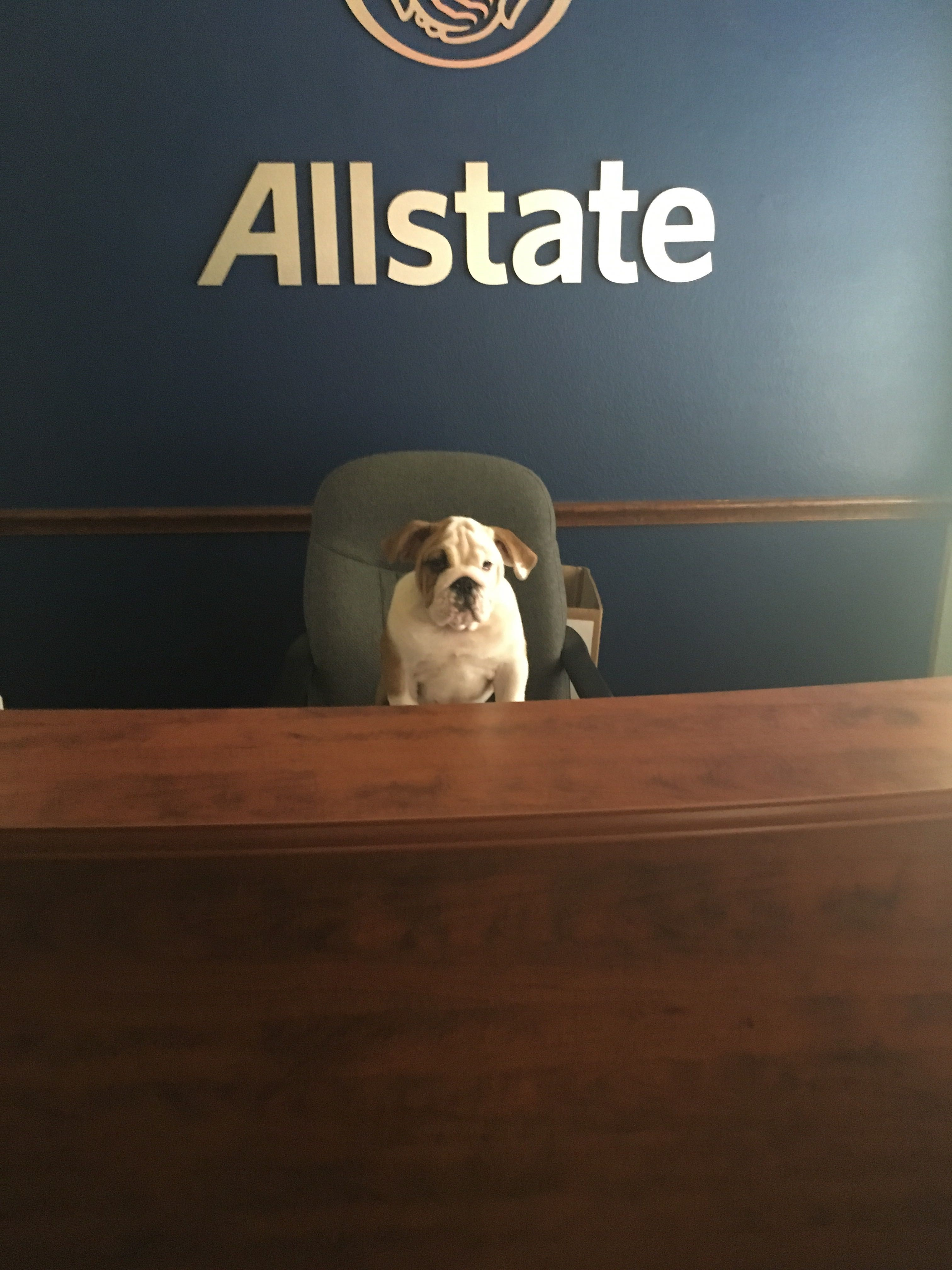 Allstate Insurance Agent: Charles McGriff image 0