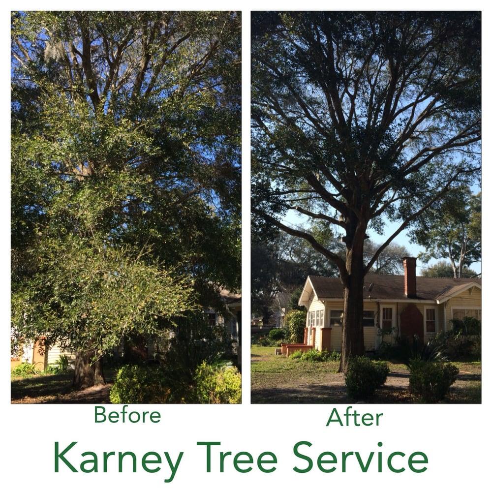 Karney Tree Service image 8