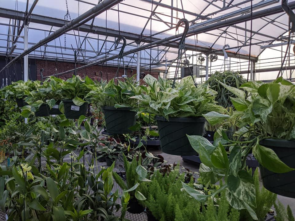 Grant Line Garden Center & Nursery