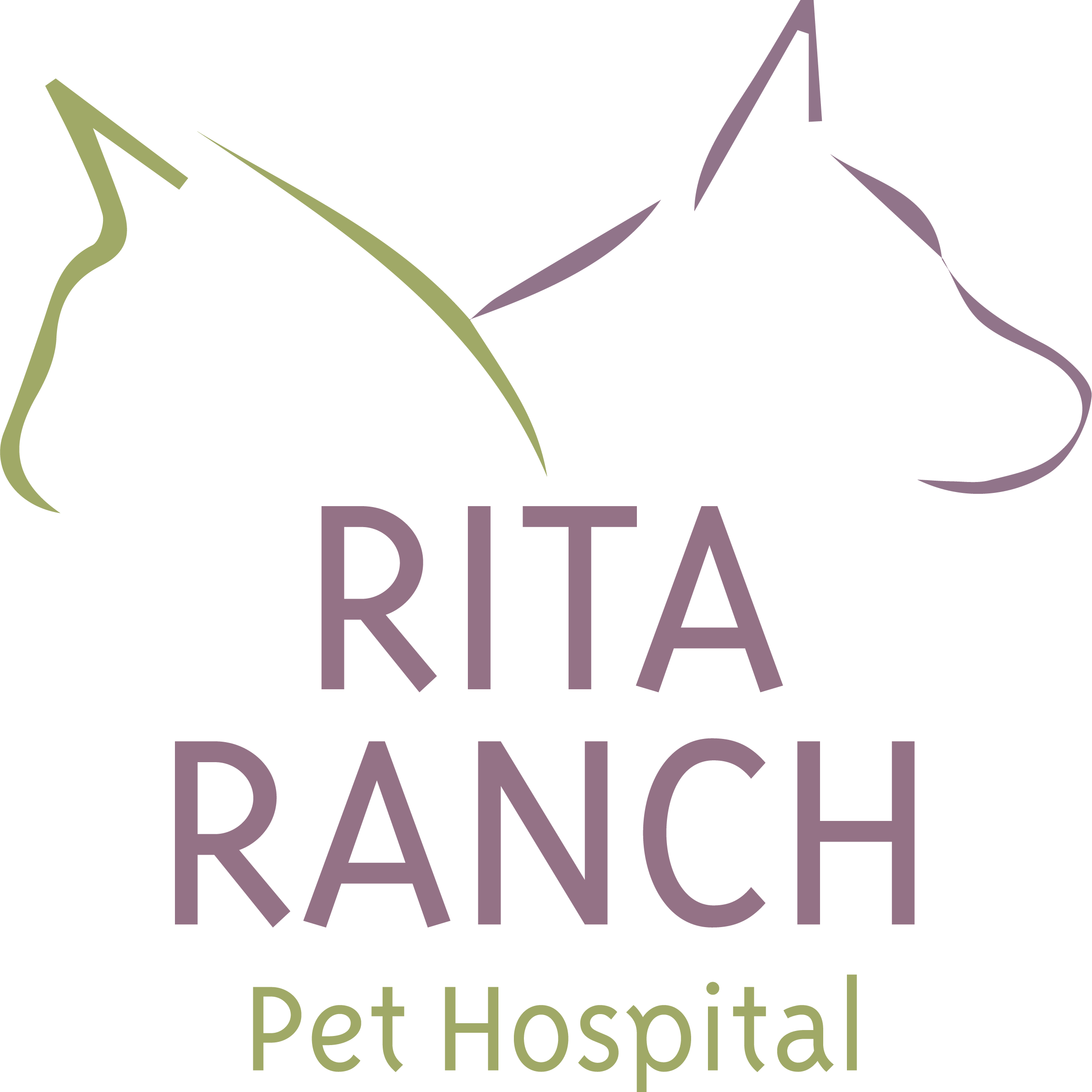 Rita Ranch Pet Hospital