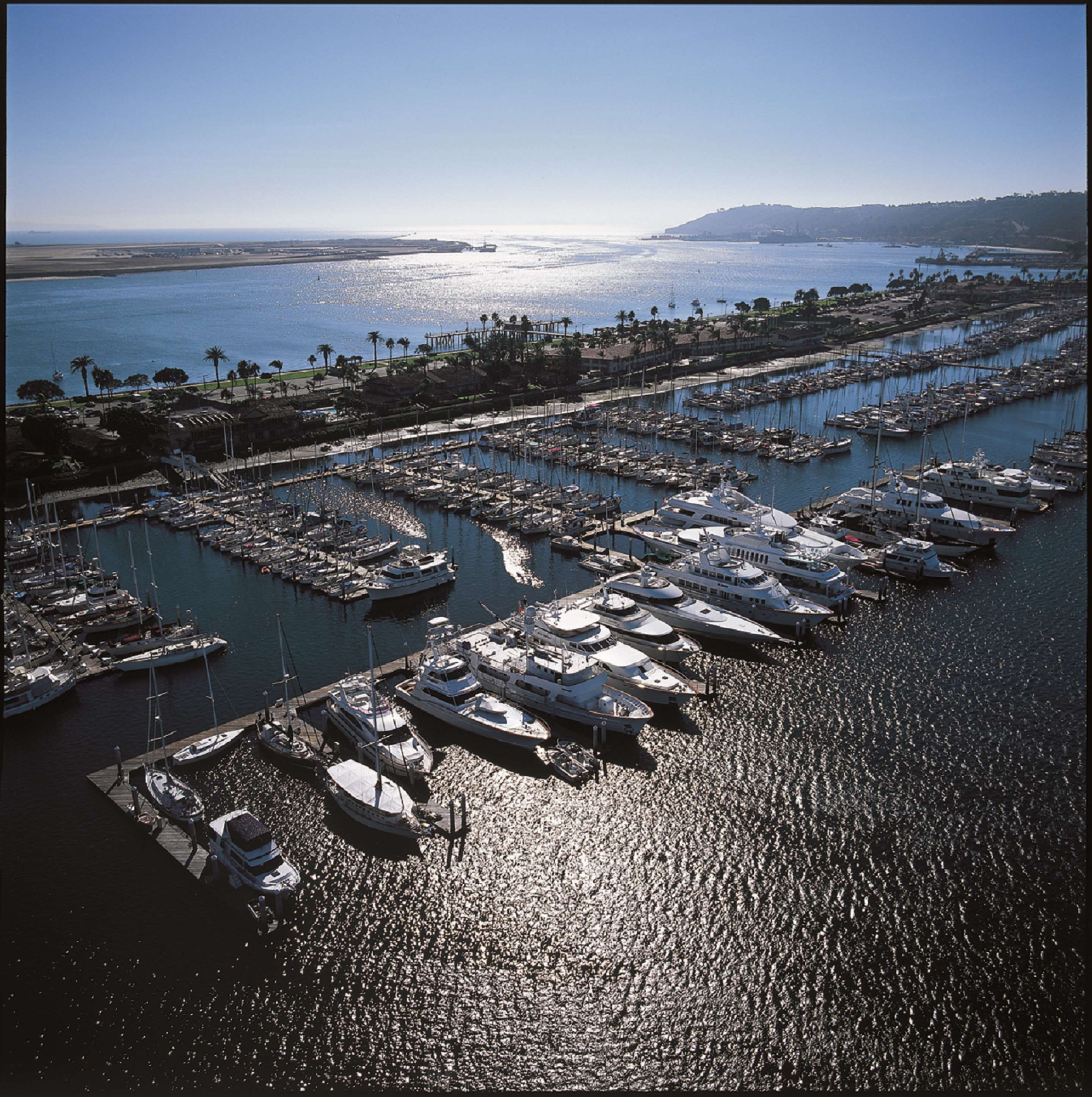 Best Western Plus Island Palms Hotel & Marina image 29
