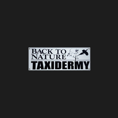 Back To Nature Taxidermy image 0