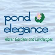 Pond Elegance