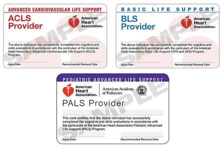 ACLS BLS PALS SKILLS SESSION - $165