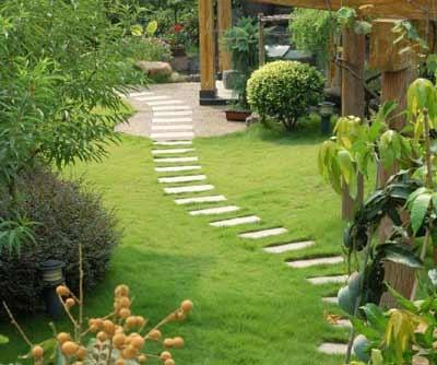 ferro gianni tutto giardino