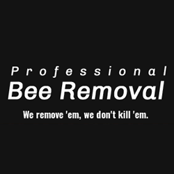 Professional Bee Removal