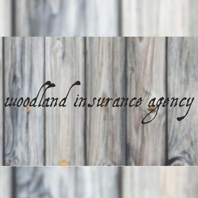 Woodland Insurance Agency image 3