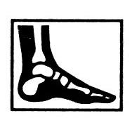 Seattle Foot and Ankle Center: J John Hoy DPM PS