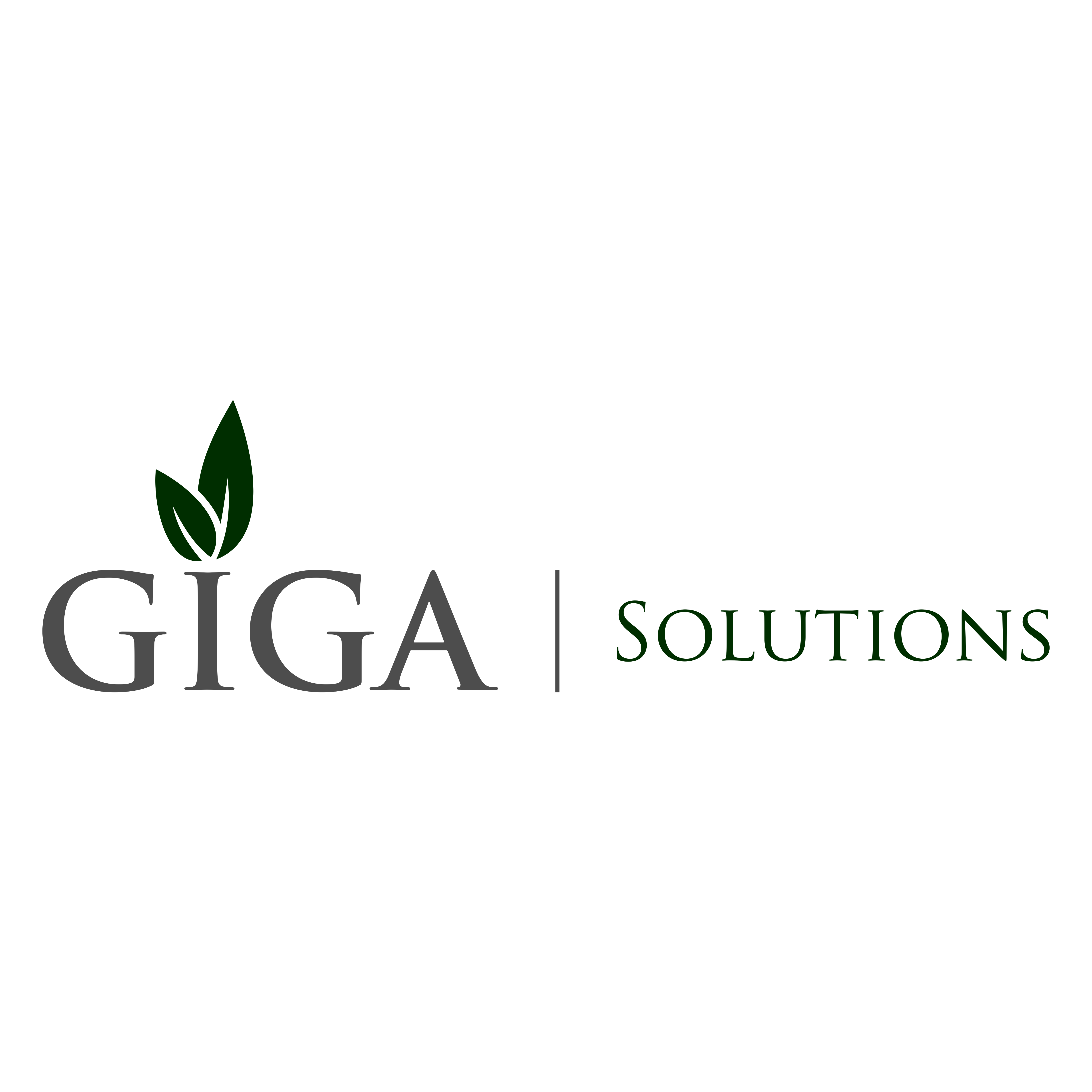 GIGA Solutions, Inc.