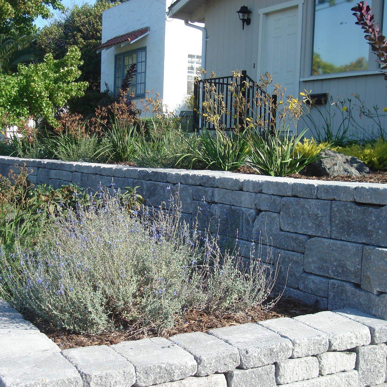 All Seasons Gardening & Landscaping image 23