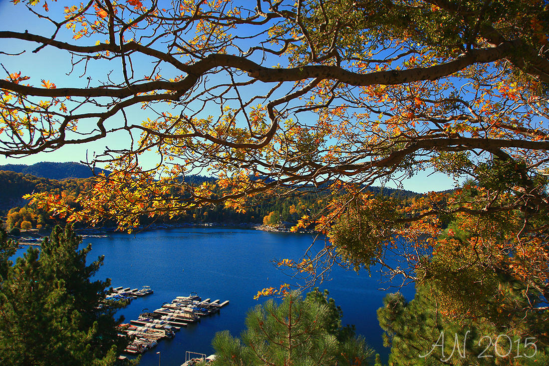 lake arrowhead latino personals The spirit of lake arrowhead resort & spa is casual luxury in a pristine natural setting following a meandering 17-mile drive along forested mountain switchbacks, you are greeted by friendly staff, sparkling lake views and lodge-style warmth.
