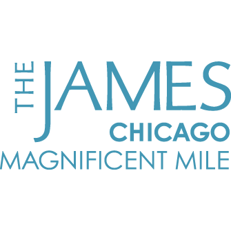 The James Chicago - Magnificent Mile image 41