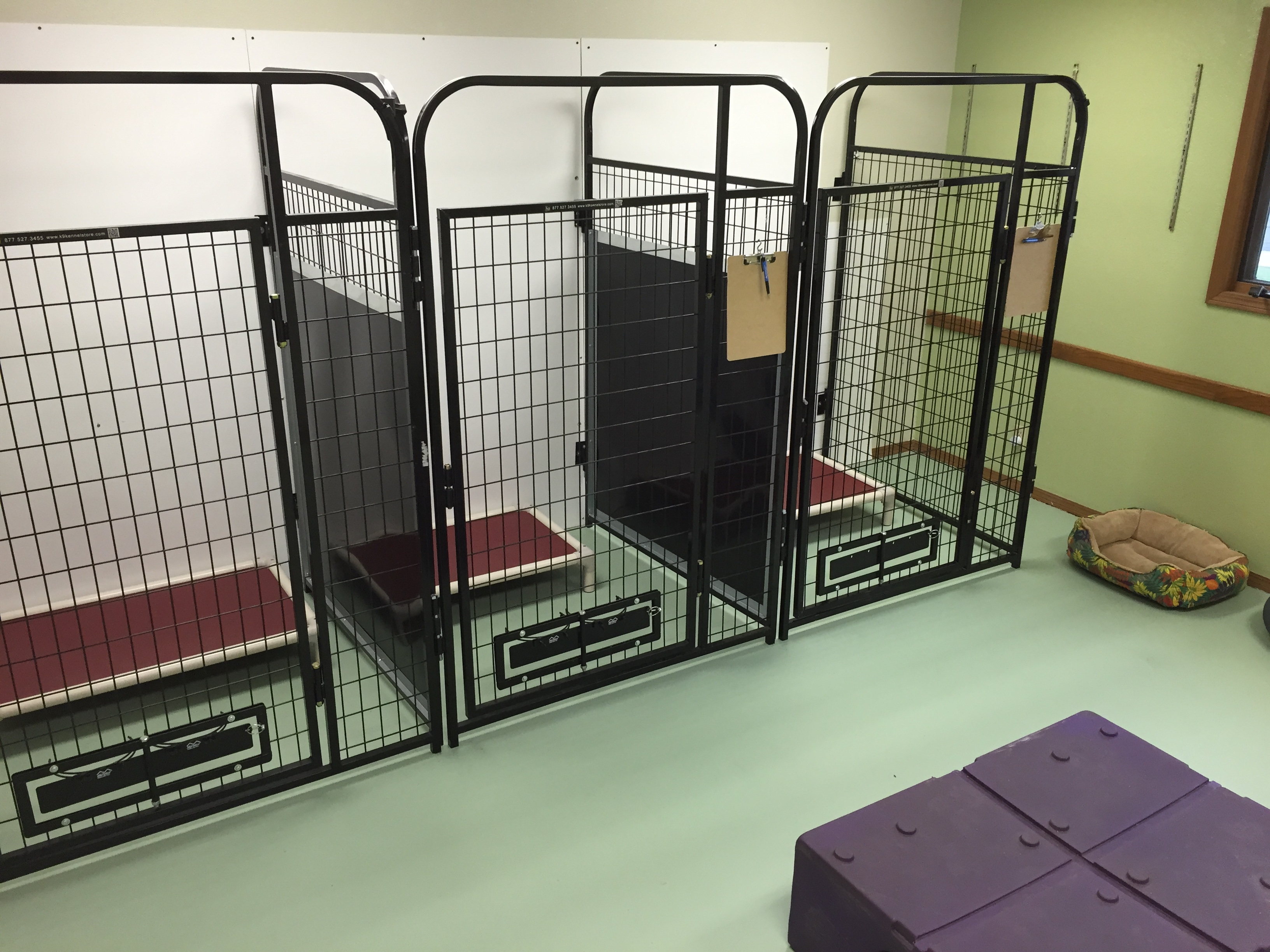 Jagger's Doggie Daycare, Dog Grooming, Training & Boarding image 12