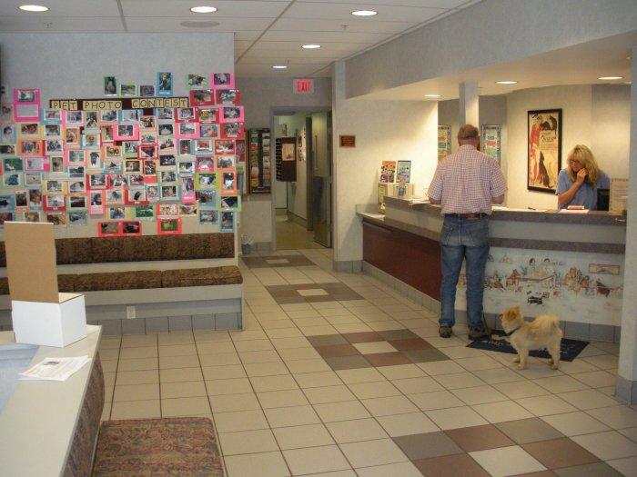 VCA Duncan Manor Animal Hospital image 5