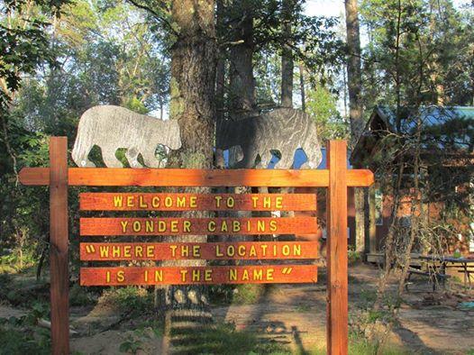 Best Bear Lodge & Campground Baldwin/Irons Area image 22