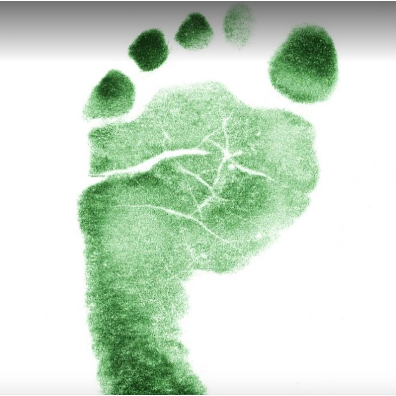 Little Feet Renovation Inc. Logo