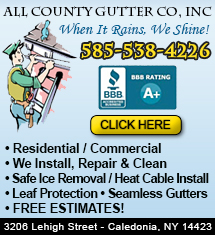 All County Gutter Company, Inc. image 0