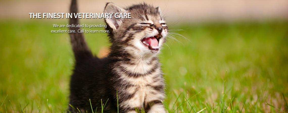 Little Miami Veterinary Service image 0